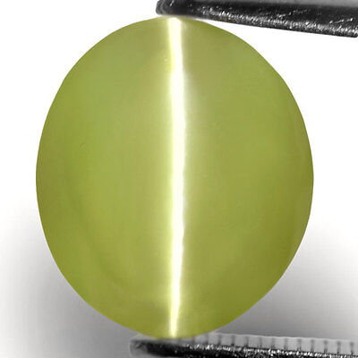 7.37-Carat Splendid Greenish Yellow Indian Chrysoberyl Cat's Eye,10.17 x 8.80 mm