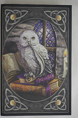 Owl Book Box Keepsake trinket  jewelry large 28cm fantasy Lisa Parker Gothic