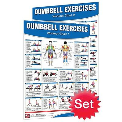Dumbbell Exercises Poster Productive Fitness Series Information Chart Set