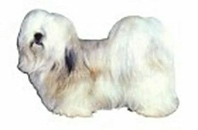 Window Sticker LHASA APSO Window Decal 2-sided CLEARANCE