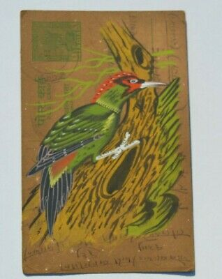 Nice Old Rajasthan Miniature Painted Indian Postcard Of A Woodpecker  No 174