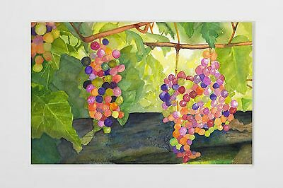 Matted Signed Watercolor Original Print Painting Grapes Vineyard Fruit Art A4