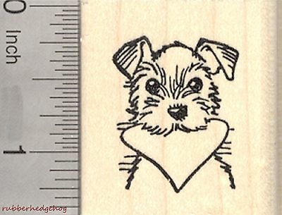 Valentine's Day Terrier Rubber Stamp, Dog with Heart in Mouth  D27009 WM