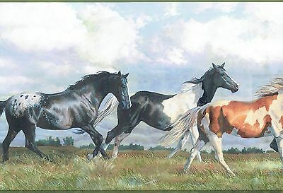 GREAT COUNTRY HORSES IN THE WILD PLAINS TALL GRASS  Wallpaper bordeR Wall decor