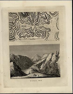 Sinai Landscape View Topographical Trails Mountains Camel nice 1817 antique map