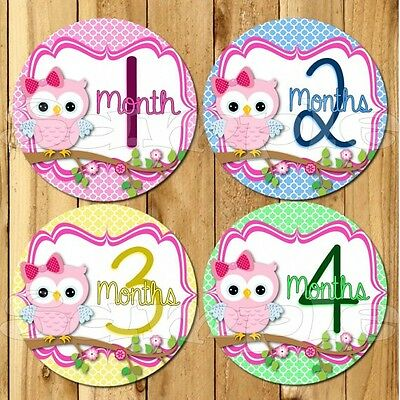 Owl Baby Girl Monthly Stickers Baby Stickers Baby Shower gift Milestone stickers