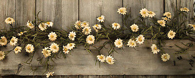 New Primitive Country Cottage Spring TEA STAINED DAISY GARLAND Swag Vine