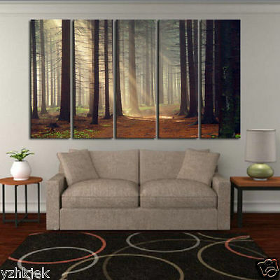 MODERN 5pc ABSTRACT HUGE WALL ART ON CANVAS Sun Rays Through Trees (NO Frame)