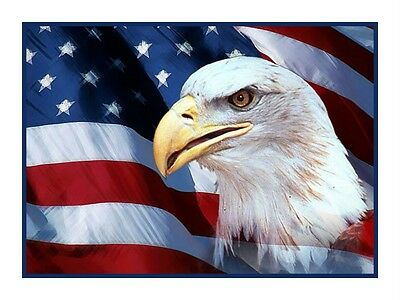 Bald Eagle and an American Flag  Counted Cross Stitch Chart