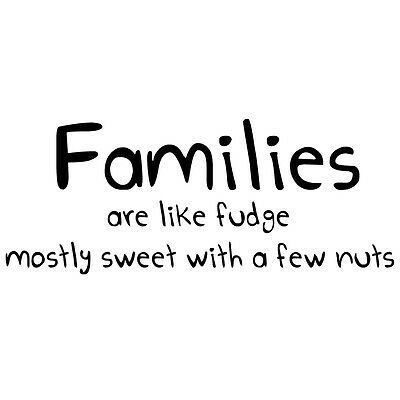 Wall Quote Decal House Home Decor Family like fudge kitchen Funny Vinyl Sticker