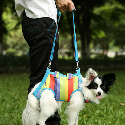 Pet Dog cat Canvas Working Travel Carrier Bag With Free Sling Multi-color S Size