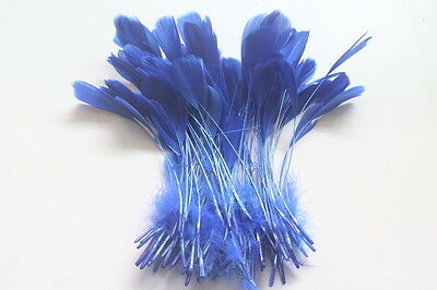 Free shipping 10 PCS beautiful natural feather 5-7 inches / 12-18 cm sapphire