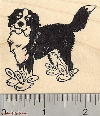Easter Bernese Mountain Dog Rubber Stamp, Bunny Slippers J27217 WM
