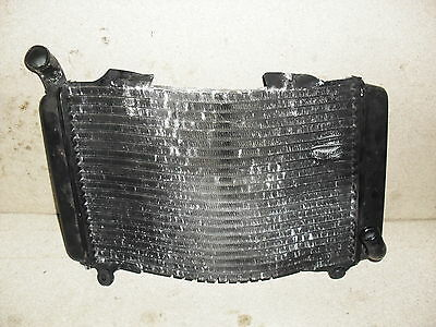 Aprilia Rs250 Radiator Rad 95 96 97 98 1995 1996 1997 1998 Spares / Repairs