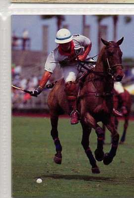 #149 Horse Polo West Palm bea equestrian collector card