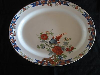 Wood & Sons~Bird of Paradise ~ Large Oval Serving Platter ~ 14 x 11 inches