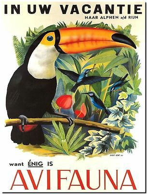 """Vintage Illustrated travel Poster CANVAS PRINT ~ Toucan South America 8""""X 12"""""""