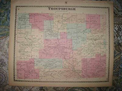 Mint Antique 1873 Troupsburg Steuben County New York Handcolor Map Young Hickory