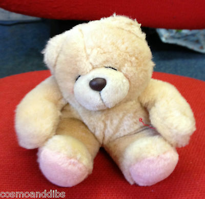Forever Friends Cuddly Bear With Foreve Friends 6089