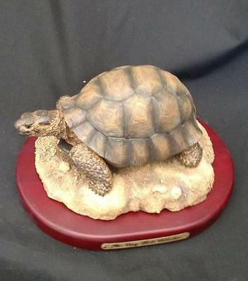 Amy & Addy Tortoise Figure AAC1621 Retired Gray Rock Collection