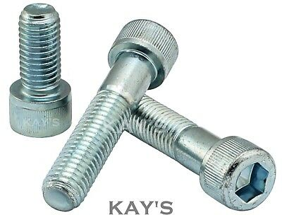 Cap Screw Allen Bolts Socket Head High Tensile 12.9 M3,m4,m5,m6,m8 Zinc Plated