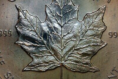 1989 Orange Toned Canadian Silver Maple Leaf Original Plastic (NUM1641)