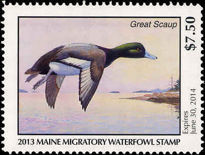 MAINE  #30  2013 STATE DUCK STAMP  GREATER SCAUP  by Richard Alley
