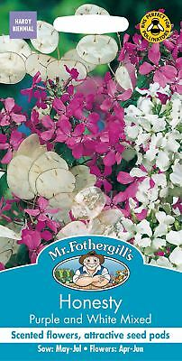 Mr Fothergills - Flower - Honesty Purple and White Mixed - 50 Seeds