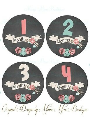 Monthly Baby Girl Stickers Photo Prop Chalkboard Floral Banner Month Milestone