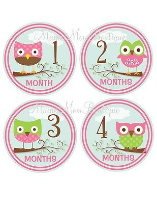 Baby Monthly Photo Prop Stickers Owl Pink Green So Cute Gift Shower New Mom