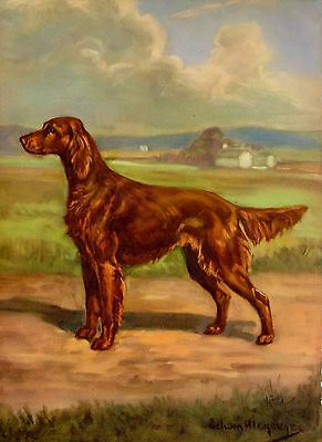 Vintage IRISH SETTER Dog Print 1950s Gallery Wall Art Megargee Art 970