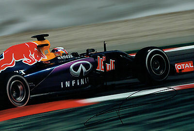 Pierre GASLY Signed Autograph 12x8 Red Bull French Driver Photo AFTAL COA