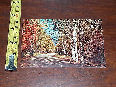 Postcard Old Country Road In Autumn