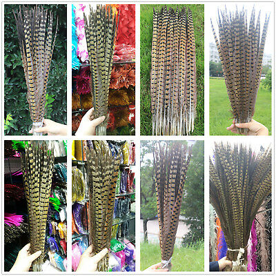 Beautiful 10/20/50/100pcs 12-32 inches / 30-80 cm Natural pheasant tail feathers