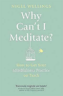 Why Can't I Meditate?: how to get your mindfulne, Wellings, Nigel, New