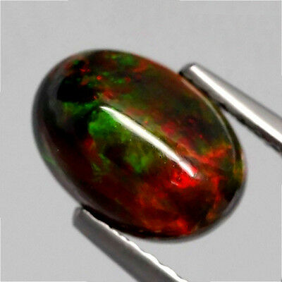 1.21 ct  Ovaler chwarzer 8.8 x 6.3 mm Cabochon Multi-Color WELO Opal
