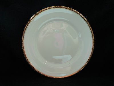 Wedgwood - CHESTER - Dinner Plate - Coutour Shape