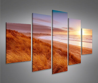 sonnenuntergang mf 5 bilder bild auf leinwand wandbild kunstdruck poster xxl eur 39 90. Black Bedroom Furniture Sets. Home Design Ideas