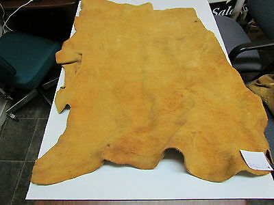"Moose Hide Native American Dark Color Home Tanned Hide 34 1/2"" By 37"" Small,"