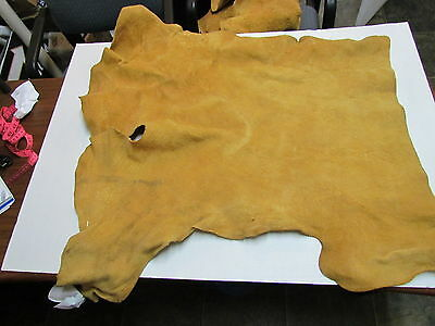 "Moose Hide Native American Dark Color Home Tanned Hide 34"" By 41"" Small, Sewing"
