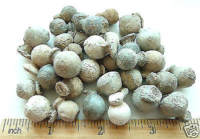 Antique Old Musket Balls 17th-19th century