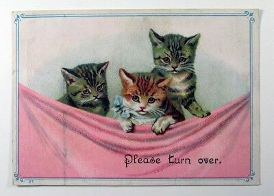 Three kitten with a pink blanket Vintage Trade Ad Card