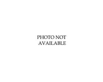 '71 Steve Mcqueen Motorcycle Race On Any Sunday Photo Baja Desert Racing Triumph