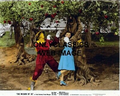 1939 Wizard Of Oz Dorothy & Scarecrow Color Photo -Haunted Forest Tree- Hug #4