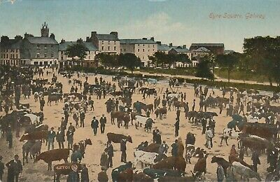 * GALWAY - Eyre Square, Cattle Market 1919