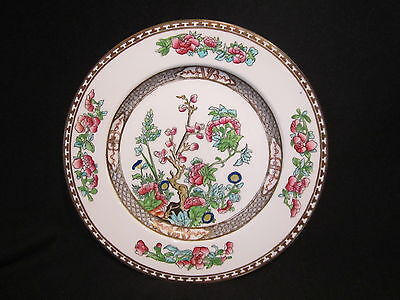 Coalport INDIAN TREE MULTI - Dinner Plate - Smooth