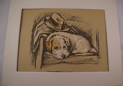 1936 LUCY DAWSON Vintage Colour Print SEALYHAM TERRIER Matted Ready to Frame