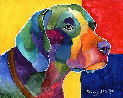 German Shorthaired Pointer 8X10 DOG  print by Artist Sherry Shipley