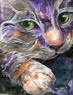 CURIOSITY 8x10  CAT Art Print by Sherry Shipley