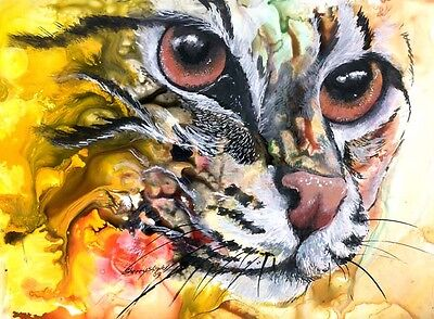 INTENSE 8x10  CAT Art Print by Sherry Shipley